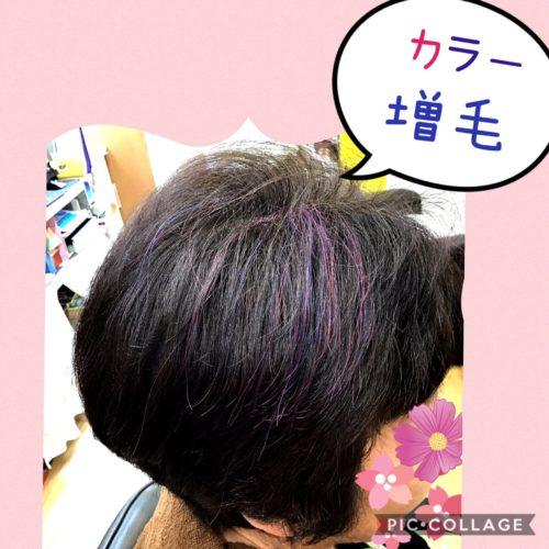 笠原さん増毛